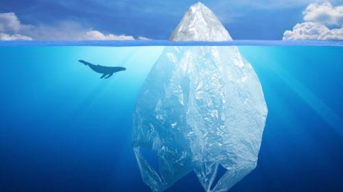 locandina plastica d'a mare