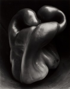 Edward Weston Pepper, 30P, 1930 stampa alla gelatina d'argento 23,5 x 19 cm© 1981 Center for Creative Photography, Arizona Board of Regents